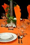 "20"" x 20"" Square Table Napkin ORANGE"